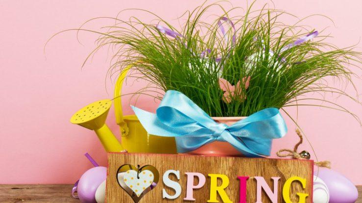La Primavera delle Associazioni torna ad Almenno San Bartolomeo
