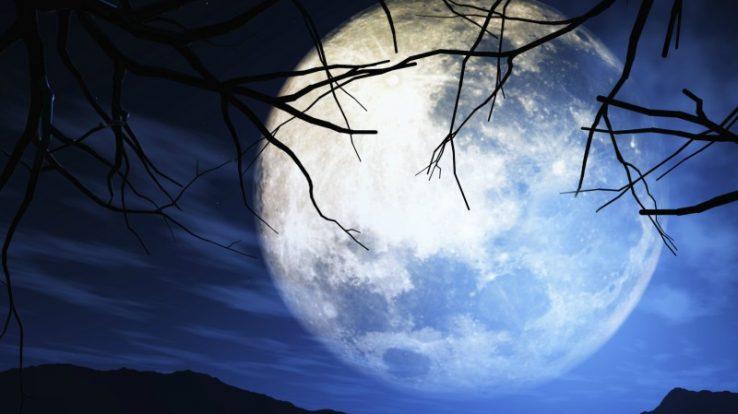 Tornano le serate Al Chiaro di Luna a Sant'Omobono Terme