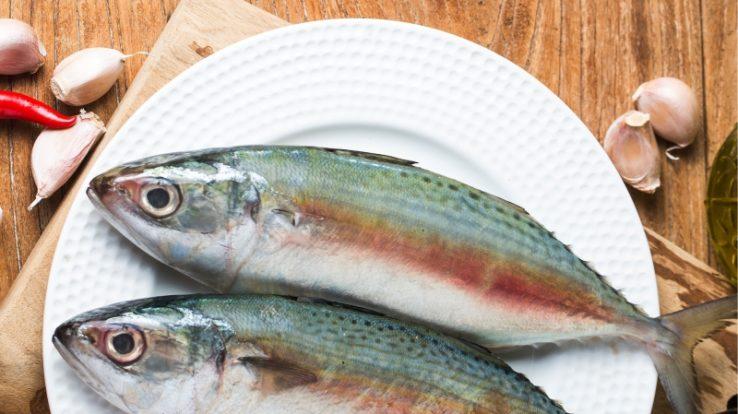Sagra del Pesce 2018: piatti di pesce e musica dal vivo a Ponte Giurino